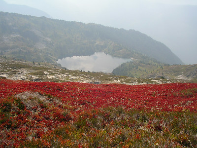 And we can see Monogram Lake from the ridge. And a bright red blueberries patch!