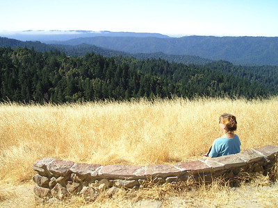 View from the Wallace Stegner bench. Looking out over the Santa Cruz Mountains towards the Pacific.