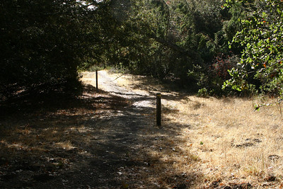 (Station 6.) Here again, you can see the trail running along the fault bench. Posts all along the trail show the line of the actual fault or a subsidiary fault.