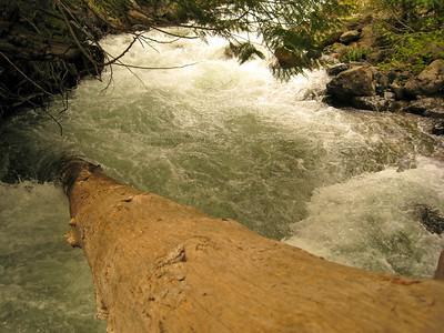 White water. Robinson Creek.