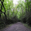 the trail follows an old logging railroad
