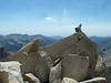 Stephen B from Bakersfield climbed the knife-edge summit of Satwooth Peak.