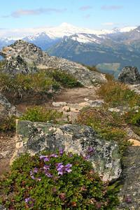 Pentamon  and Glacier Peak.