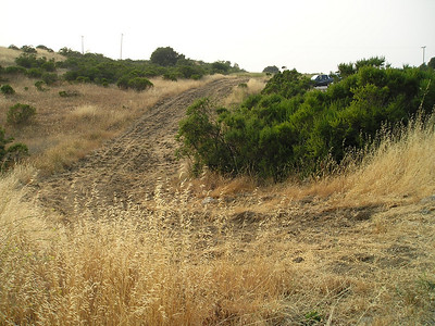 This firebreak alongside the parking lot seems so tiny compared to some of those fires.