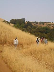 Curving around a hillside.