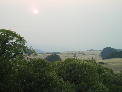 Sun, view...