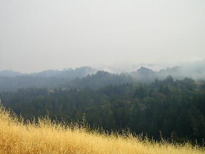 Hills and haze and fog.
