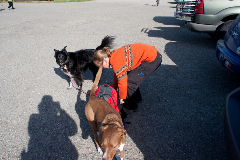 Barbara, Sheila, and Jersey in the parking lot.