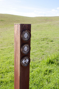 Trail markers.