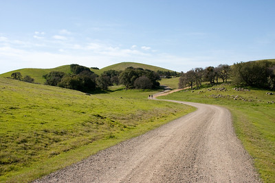 The trail leads on into the hills.