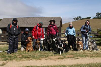 Morgan Territory, Dogs, Wildflowers, May 30, 2011