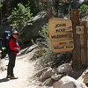 Timber crossing the threshold into the John Muir Wilderness.