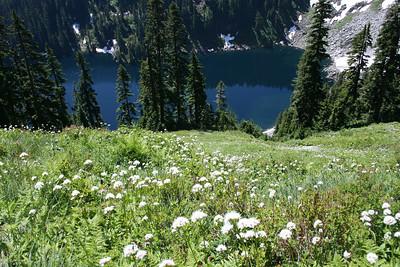 Alaska lake and white wildflowers.
