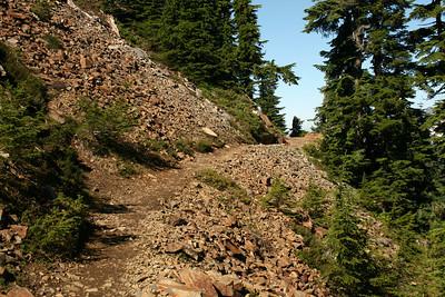Love this trail!