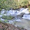 Lower Martins Creek Falls