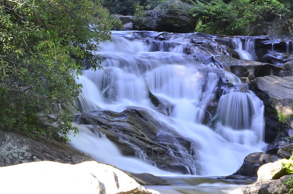 Chattahoochee National Forest 6/2/12