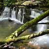 Small cascades down creek of Kings Creek Falls