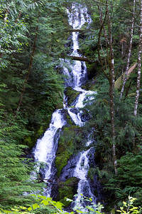 I think these series of falls are coming from Wells Creek which feeds into the Nooksack River.  The camera is not capturing how high these go.  I could not get near the base and the tree canopy obscures the water cascading over the rocks.
