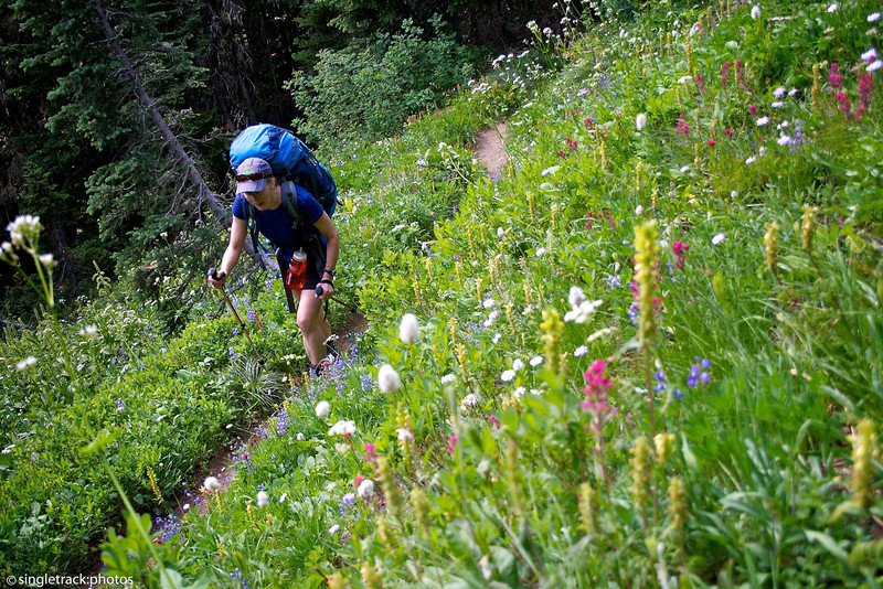 Climb from Yellowstone camp to Windy Gap.