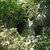 Dark Hollow Trail.
