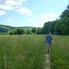 Sweet Clover Trail.