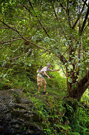 John Melton and the Sacred Leaf  On the edge, over looking the top of Ka'au Waterfall No. 1