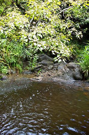 Ka'au Waterfall No. 3 - Base The Pools Edge - Redefining