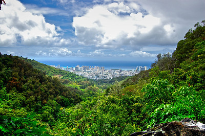 ~ Hawai'i Memory ~  Manoa Cliff Trail