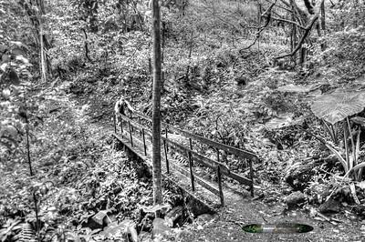 ~ Hoge's Leaf Bridge Silvered ~
