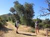 Oakzanita Peak on the horizon.