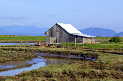This barn is heavily photographed.  I don't think it is still used, but the pier out into the slough behind it seemed in good condition.  I took multiple shots from various angles and experimented.