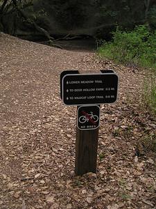 Trail sign with leaf-strewn trail.
