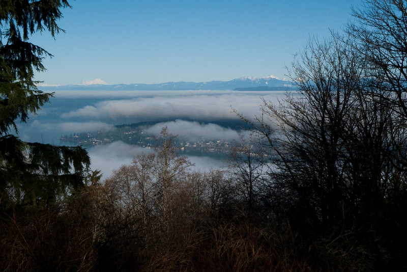 The inversion from Cougar Mountain.  That is Bellevue and Issaquah trapped under the clouds.