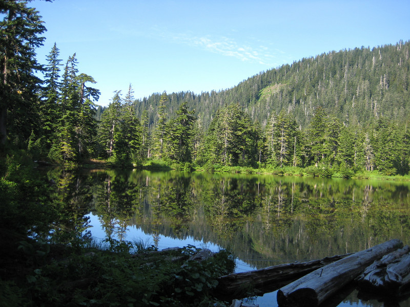 Saddle Lake, 2.5miles after the TH. Looks lovely but is quite mosquito infested