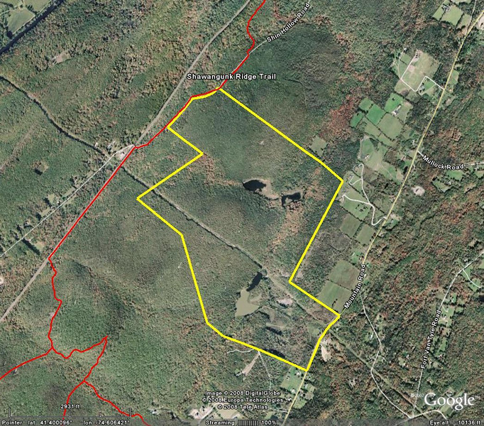 Yellow is Ridgeview Estates (400+ acres). Red is SRT and proposed side trails.