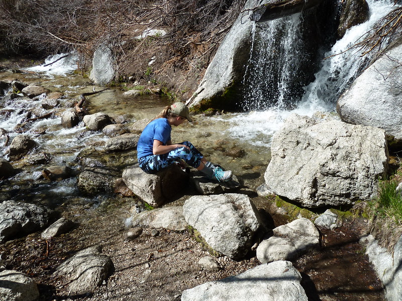 Drinking water: North Fork Lone Pine Creek