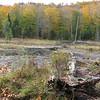 Beaver Pond always deserves a snap shot.