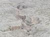Sandstone Canyon