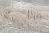 The Mud Palisades
