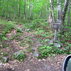Terminsu of Crawford Ridgepole Trail
