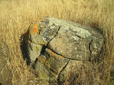 The predominant rocks in this park are serpentine.