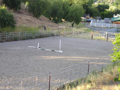 At the Norred Stables, apparently during the day some REALLY BIG DOGS do some agility in the arena.