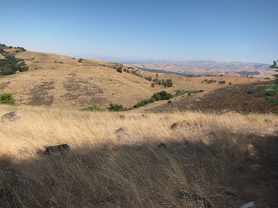 From the teeny bit of San Jose that you see in the distance, hard to believe that there's a county with a million population just the other side of that hill.