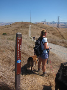 Barbara and dogs at trail junction; we're now joining a segment of the Bay Ridge Trail. Coyote Peak with the radio tower.