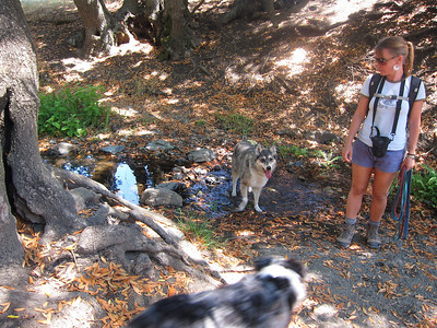 The day grew warmer, and even though the last 2 miles were all downhill, Tika was very, very happy to get into the stream here as Barbara watches.
