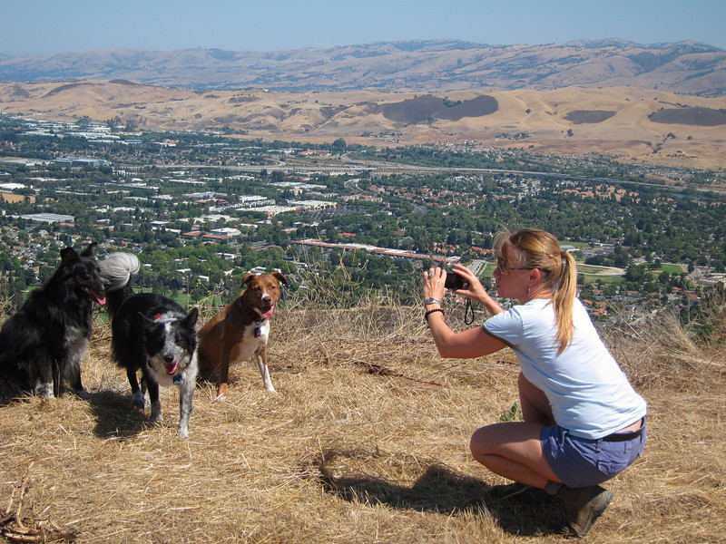 Here's barbara and her dogs atop coyote peak, looking out over east San Jose.