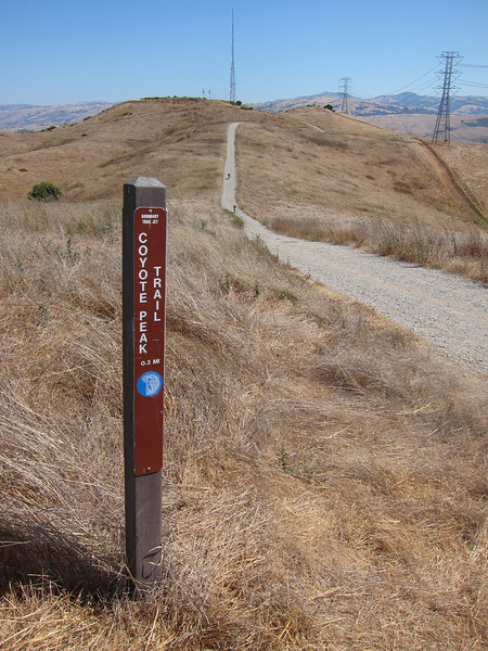 Trail junction; we're now joining a segment of the Bay Ridge Trail. That's Coyote Peak with the radio tower.