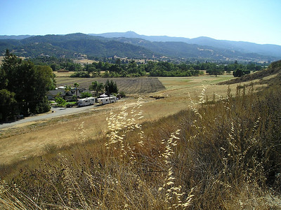 Partway up the hill, it became clear how amazingly empty this little valley around the hill's corner from my house really is. Looking out towards the coastal range, Mount Umunhum middle back.