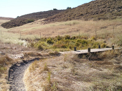 Between the two hills, this little bridge over a moist area. Maybe a spring?