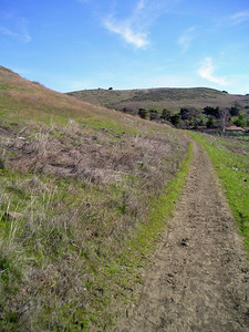 Starting out from the Stile Ranch entrance at Fortini Road, the trail moves gently upward through grassland.
